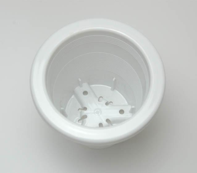 懸崖鉢up